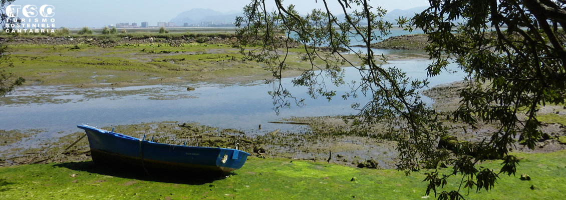 Parque Natural de las  marismas de Santoña, Victoria y Joyel